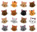 Vector Collection of Cute and Playful Cats
