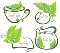 Vector collection of eco drink and text frames ve Royalty Free Stock Images