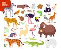 Vector collection of flat hand drawn rare wild animals isolated on white background: zebra, tiger, flamingo, echidna, yak, panda.