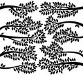 Vector Collection of Leafy Tree Branch Silhouettes Royalty Free Stock Photo