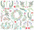 Vector Collection of Vintage Style Hand Drawn Florals Royalty Free Stock Photo