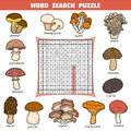 Vector color crossword about mushrooms. Word search puzzle