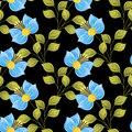 Vector Colored Seamless Floral Pattern Royalty Free Stock Photo