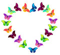 Vector colorful flying butterflies Stock Photo