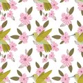 Vector colorful hummingbirds seamless pattern on white background with pink flowers
