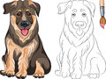 Vector Coloring Book of Puppy Shepherd Royalty Free Stock Photo