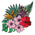 Vector composition of hand drawn tropical flowers, palm leaves, jungle plants Royalty Free Stock Photo