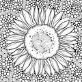 Vector composition with outline open Sunflower or Helianthus flower on the abstract background. Floral elements in contour style. Royalty Free Stock Photo