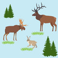 Vector concept with forest animals in the meadow with design Royalty Free Stock Photo