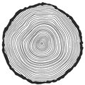 Vector conceptual background with tree rings cut stump snag Royalty Free Stock Images