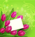 Vector congratulatory background of tulips and car the card Stock Photo