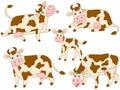 Vector Cows Set