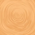 Vector crosscut tree rings background timber Royalty Free Stock Photos