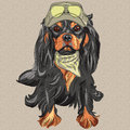 Vector cute hipster dog cavalier king charles span red spaniel breed in cap and cravat khakis and glasses Stock Images