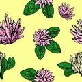 Vector cute seamless pattern. Bright summer clover