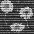 Vector Daisies striped. seamless pattern. Denim floral wallpaper. Gray jeans background with flowers. Royalty Free Stock Photo
