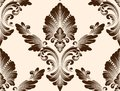 Vector damask seamless pattern element. Classical luxury old fashioned damask ornament, royal victorian seamless texture Royalty Free Stock Photo
