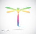 Vector design of dragonfly Royalty Free Stock Photo