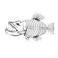 Vector design template of aggressive  fish skeleton Royalty Free Stock Photo
