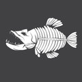 Vector design template tropical fish skeleton Royalty Free Stock Photo