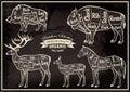 Vector diagram cut carcasses boar, bison, deer, horse