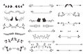 Vector dividers calligraphic line element.