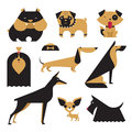 Vector Dog Royalty Free Stock Image