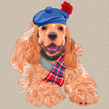 Vector dog american cocker spaniel in scottish ta cartoon hipster breed a red hat glasses and bow tie Stock Image