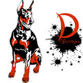 Vector dog doberman pinscher breed sitting Stock Image