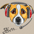 Vector dog jack russell terrier call center opera customer service worker operator with phone headset says hello Stock Photography