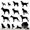 Vector Dog Silhouettes Royalty Free Stock Photo