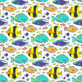 Vector doodle fishes pattern. Hand drawn marine seamless texture.