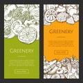 Set of Fruits Vegetables Vector Illustration.