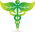 A vector drawing represents caduceus design Stock Image