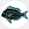 Vector drawn freshwater fish silhouette, natural graphic symbol. Royalty Free Stock Photo