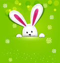 Vector easter bunny looking out a green background Royalty Free Stock Image
