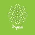 Vector eco organic emblem logo design template. Eco green concept of natural products Royalty Free Stock Photo