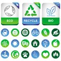 Vector ecology infographics elements Royalty Free Stock Image