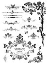 Vector elements and page decoration with roses in black white Stock Images