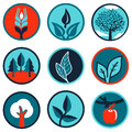 Vector emblems and signs with leaves and trees set of Royalty Free Stock Image