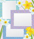 Vector empty photo frames with daffodils. Stock Photos