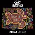 Vector Ethnic Design Element. Indians. MOLA Art Form. Mola Style Turtle. Ethno Bright Decorative Illustration