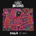 Vector Ethnic Design Element. Indians. MOLA Art Form. Royalty Free Stock Photo