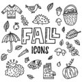 Vector fall doodle icons
