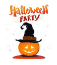 Vector flat halloween card, advertisement, banner, poster, placard, party invitation, flayer design. Royalty Free Stock Photo
