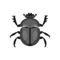 Vector flat style illustration of scarab beetle.