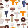 Vector flat style seamless pattern with various eatable mushrooms