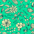 Vector floral background pattern with butterfly and dragonfly in Royalty Free Stock Photo