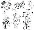 Vector floral decoration on white. Royalty Free Stock Photography