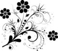Vector floral elements for design Stock Photos